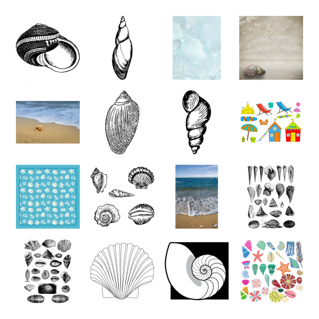 Lovely Seashells Journal Templates Royalty-Free Images