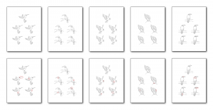 Zen PLR Bonus for ColorMePositivePLR Birds Coloring Book Kit Find the Differences
