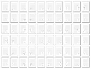 Zen PLR Bonus for ColorMePositivePLR Birds Coloring Book Kit Journal Pages Lineart