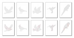 Zen PLR Bonus for ColorMePositivePLR Birds Coloring Book Kit Mazes
