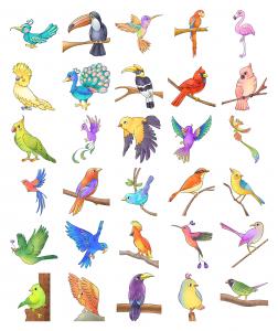 Zen PLR Bonus for ColorMePositivePLR Birds Coloring Book Kit Watercolor Effect
