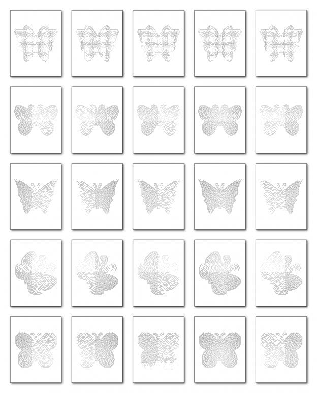 Zen PLR Crazy Mazes Butterflies Edition Volume 01 All Mazes Graphic