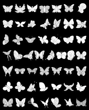 Zen PLR Line Designs Butterflies Lineart All Clipart