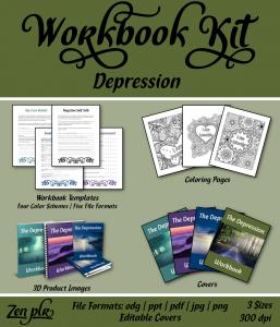 Zen PLR Workbook Kit Depression Front Cover